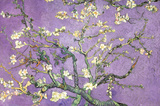 Purple Almond Blossoms Poster von Vincent van Gogh