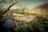 Abandoned Photographic Print by David Bracher
