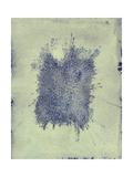 Fleck Giclee Print by Petr Strnad