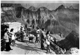 Arizona Grand Canyon Archival Photo Poster Posters