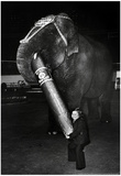 Circus Archival Photo Poster Photo