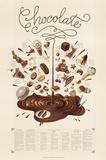 Chocolate Educational Food Poster Poster par Naomi Weissman