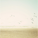 Can You Hear the Sounds Photographic Print by Susannah Tucker