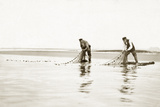 Fishermen take in their nets, 1911 Photographic Print by  Scherl