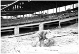 1930 Wrigley Field Construction Archival Photo Poster Photographie