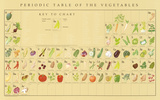 Periodic Table of the Vegetables Educational Food Poster Prints by Naomi Weissman