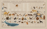 Periodic Table of the Rare and Endangered Species Educational Poster Affiches par Naomi Weissman
