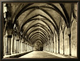 Salisbury Arches Framed Photographic Print by Judith Bartos