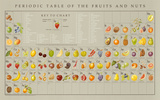 Periodic Table of the Fruits and Nuts Educational Food Poster Plakaty autor Naomi Weissman