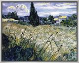Landscape with Green Corn Brushstroked Canvas by Vincent van Gogh