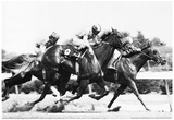 Rockingham Park Horse Racing 1976 Archival Photo Poster Poster