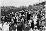 Kentucky Derby Horse Racing 1965 Archival Photo Poster Posters