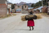 An Aymara Indian Woman Carrying a Bundle of Straw Photographic Print by Jonathan Irish