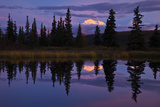 Tall Trees Reflected in a Pond with Mt. Mckinley in the Distance Photographic Print by Ralph Lee Hopkins