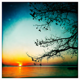 Sunset on Calm Albemarle Sound Photographic Print by Skip Brown
