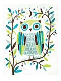 Night Owl II Premium giclée print van Michael Mullan