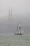 A Two Masted Schooner Sails under the Golden Gate Bridge Fotografisk tryk af Skip Brown