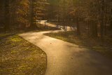 The Winding Matthew Henson Trail, a Greenway for Hikers and Cyclists Photographic Print by Stephen St. John