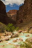 Hiker Walking in the Turquoise Waters of Havasu Canyon Papier Photo par Ralph Lee Hopkins