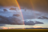 A Double Rainbow in the Sky over the Gobi Photographic Print by Jonathan Irish