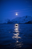 Rafting Down the Copper River at Night Photographic Print by Michael Christopher Brown