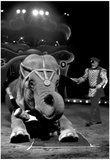 Circus Archival Photo Poster Poster