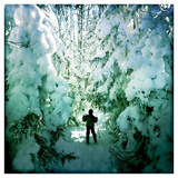An Eight Year Old Boy Skis Through Snowy Trees Photographic Print by Skip Brown