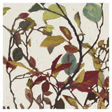 Bordeaux Leaves II - Mini Posters par Rick Novak