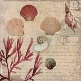 Coral II Print by Aimee Wilson