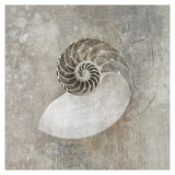 Nautilus I Art by Elena Ray