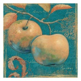 Lovely Fruits II Premium Giclee Print by Daphne Brissonnet