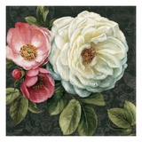 Floral Damask II Premium Giclee Print by Lisa Audit