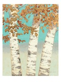 Golden Birches III Premium Giclee Print by James Wiens