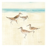 Sand Pipers Square I Premium Giclee Print by Avery Tillmon