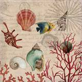 Coral I Láminas por Aimee Wilson