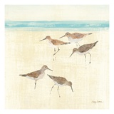Sand Pipers Square II Premium Giclee Print by Avery Tillmon