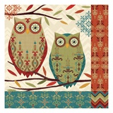 Hoot II Premium Giclee Print by Veronique Charron