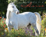 Happiness is a Horse - 2014 16-Month Calendar Calendars