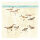 Sandpipers Premium Giclee Print by Avery Tillmon
