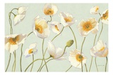 White and Bright Poppies Giclee-tryk i høj kvalitet af Shirley Novak