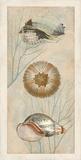 Ocean Companions II Print by Deborah Devellier
