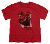 Youth: Man of Steel - Head Walking T-shirts
