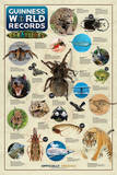 Guinness World Records (Creatures)   Prints
