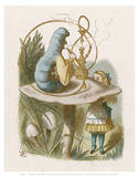 Alice Mushroom Poster