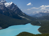 Bright Turquoise Colored Peyto Lake from the Bow Summit in Banff National Park, Canada. Photographic Print by Howard Newcomb