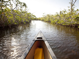 A Canoe in Mangroves, Everglades National Park, Florida Photographic Print by Ian Shive