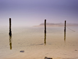 Calm  Winter Beach Waiting for Boats to Dock at Poles in Water Photographic Print by James Shive