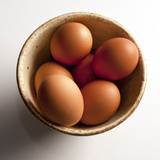 Organic Brown Eggs Photographic Print by Megan Q. Daniels