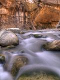 View Along the Hike Through the Zion Narrows in Southern Utah's Zion National Park Photographic Print by Kyle Hammons