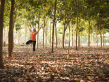 Lisa Eaton Practices Tree Pose in a Rubber Tree Plantation -Chiang Dao, Thaialand Photographic Print by Dan Holz